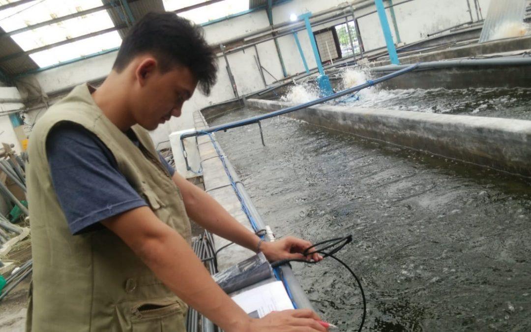 Fishaurus Mulai Implementasi Awal Nanobubble Di Balai Perikanan Budidaya Air Payau Situbondo